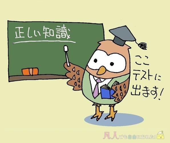 アフィリエイトの正しい知識を教えているフクロウ先生